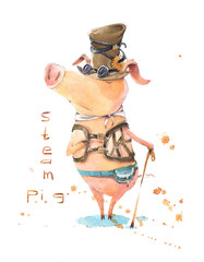 Charismatic and irresistible steam pig