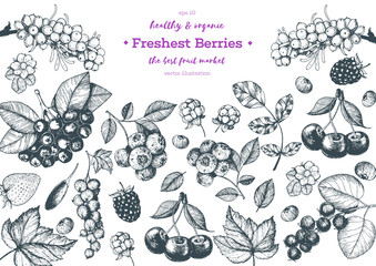 Berries hand drawn vector illustration frame. Hand drawn sketch illustration with sea buckthorn, goji berries, cloudberry, blueberry, strawberry. Healthy food design template with berries
