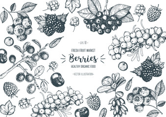 Berries hand drawn, vector illustration frame. Hand drawn sketch illustration with buckthorn, blueberry, blackberry, cherry, barberry, blackthorn, raspberry. Healthy food design template with berries