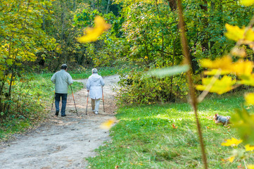 Nordic walking  senior couple in a forest
