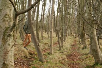 Tuinposter Eekhoorn the pentlands