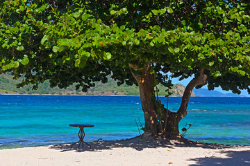 Welcoming sandy beach with a table under large sea grape tree, St. Thomas, USVI. Tropical island with sandy beaches and mountainous landscape on horizon.