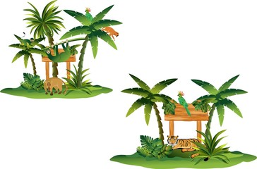 Tropical plants and animals set, isolated on white vector illustration