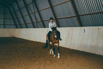 Poster Horseback riding A girl on horseback riding an arena