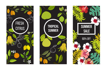 Summer banner set with citrus fruits