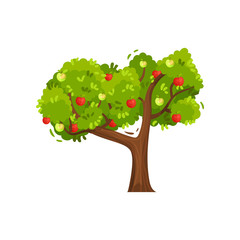 Big green tree with ripe apples on branches. Summer fruit. Natural food. Agricultural plant. Flat vector icon