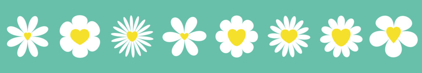 White daisy chamomile set line. Camomile icon. Cute round flower plant collection. Yellow heart center. Growing concept. Love card symbol. Flat design. Green background. Isolated.