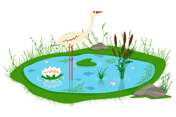 Pond with reeds, lily, grass, stones and a stork. Vector cartoon illustration of a lake isolated on white background.