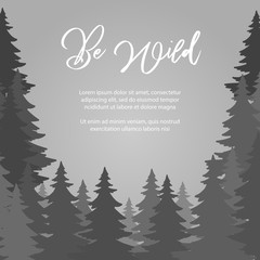 Be wild poster vector design. Fir trees forest vector background. Forest landscape and adventure panorama illustration