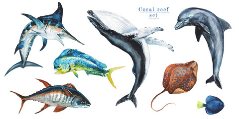 Watercolor set of hand-drawn marine illustrations - mahi-mahi fish, marlin, dolphin, whale, tuna, wahoo, stingray. Character, logo, children wallpaper, doodle. Marine clip art. Ocean, sea inhabitant.