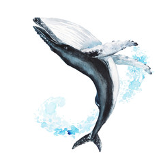 Watercolor hand-drawn humpback whale illustration - jumping up from the foamy ocean wave, playful, happy mammal. Character, logo, children wallpaper, doodle. Marine clip art. Ocean, sea inhabitant.