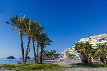 Palm trees on a beach in Almunecar, Andalusia region, Costa del Sol, Spain