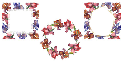 Purplr ahd red irises botanical flower. Watercolor background illustration set. Frame border ornament square.