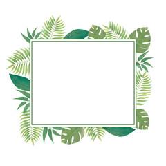 Green floral frame. Tropical plants frame