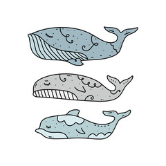 Vector cute dolphin and whales set, northen sea collection.