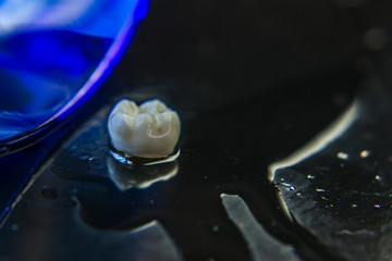 fotografia artística dentes