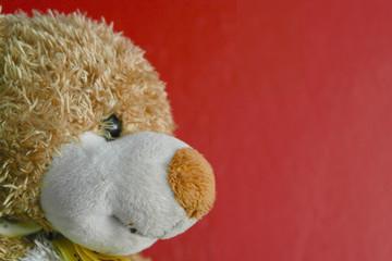 Oso de peluche, perfil con fondo rojo