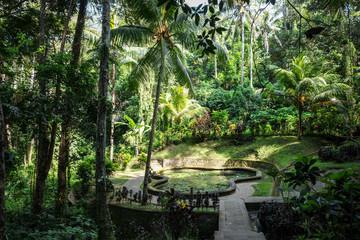 Pond and jungle in Goa Gajah elephant cave temple, Ubud, Bali, Indonesia