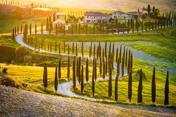 Tuscan Landscape - Val d'Orcia