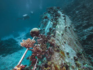 Scuba divers exploring coral covered shipwreck in red sea