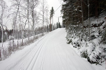 Cross country skiing on a cold and snowy winter day in Dalarna,Sweden.