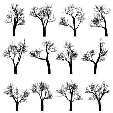 Tree trunks silhouettes set, hand drawn vector design elements