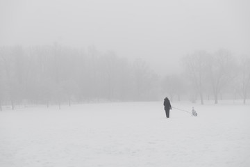 Woman walking dog in park in winter with heavy fog