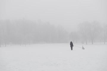 Woman walking dog in park in winter with heavy fog