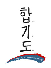 Hand drawn Hieroglyph translates Hapkido. Vector Korean martial art symbols on white background with red and blue calligraphic lines national flag colors  and text. Ink brush Korea calligraphy font