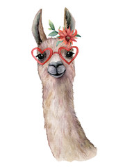 Poster Lama Watercolor card with llama, flower and sunglasses. Hand painted beautiful illustration with animal, red flower and sunglasses isolated on white background. For design, print, fabric or background.