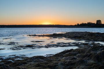 Foto op Plexiglas Caraïben Maine Coast at Sunset from Campsite