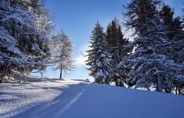 Brunnach Ski Ressort, St. Oswald, Carinthia, Austria - January 20, 2019: Captured sun rays shining throw the trees beside a slope in St. Oswald, Carinthia, Austria beyond.