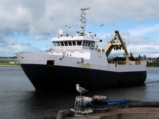 Stern Trawler arriving at port to discharge fish.