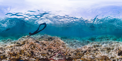 360 of snorkeler diving coral reef in American Samoa