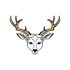 Wild beautiful deer, hand drawn boho stylish portrait. Tattoo line work
