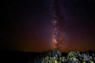 Milky Way and Sage Brush by Skip Weeks