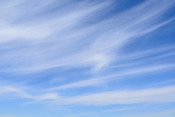 Cirrus clouds on blue sky, thin and wispy