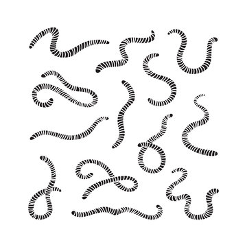Carved silhouette of earthworms. Set of worms. Illustration of animal, nature, fishing, earth and ground. Flat icons, simple vector design