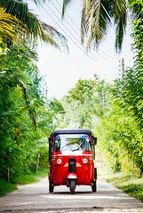 Foto op Canvas Asia land Red tuk-tuk under the palm trees on the country road