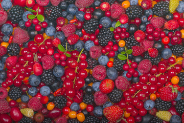 set of berries background. top view