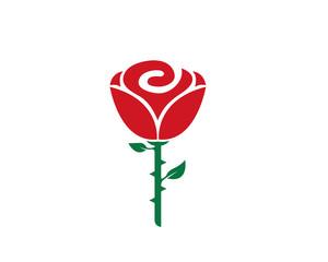 Rose flower Logo Template icon