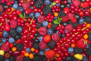 various berries background. top view