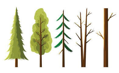 Diversity tree isolated on white illustration vector