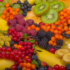 set of fruits and berries background