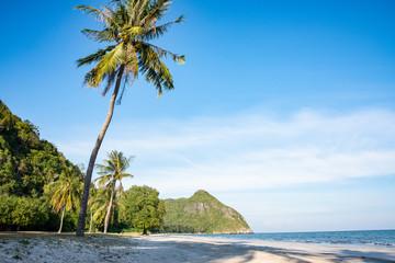beautiful beach and tropical sea in nature Wall mural