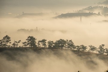 the fog and the sun in an early morning  at Da Lat city, the pine hill and greenhouse under the hill in mist