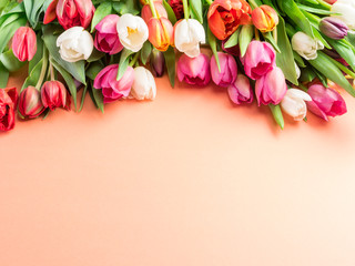 Colorful  bouquet of tulips on orange background.