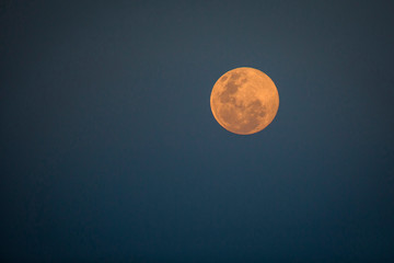 A full moon at dusk, orange-pink moon against dark-blue background