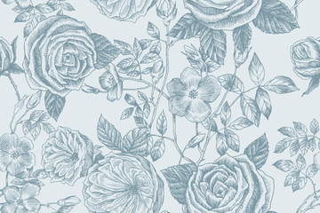 Wild roses blossom branch seamless pattern. Vintage botanical hand drawn illustration. Spring flowers of garden rose, dog rose. Vector design. Can use for greeting cards, wedding invitations, patterns