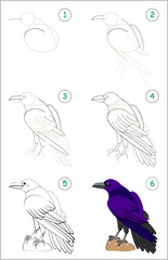 Educational page for kids shows how to learn step by step to draw a cute raven. Back to school. Developing children skills for drawing and coloring. Vector cartoon image.